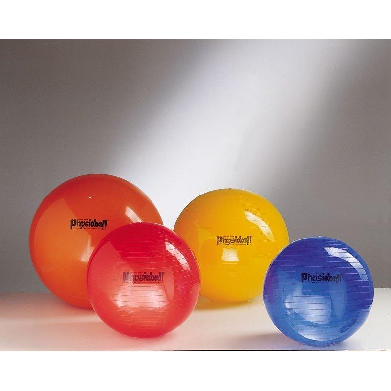 Physioball standart 95cm Ledragomma Pezzi