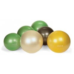 Gymnic Plus 65 cm BRQ gymball
