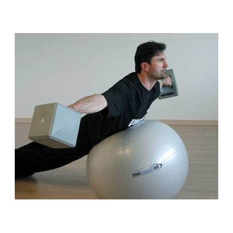 Pro Maxafe gymnastikball 75 Ledragomma - velký gymnastický míč pro nácvik koordinace a stability